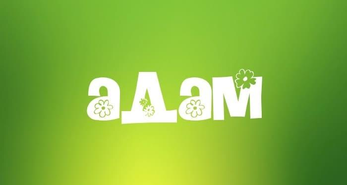Значение мужского имени Адам
